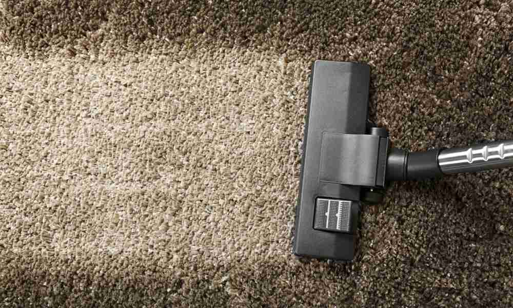 Best Canister Vacuum for Pet Hair Top 10 Features